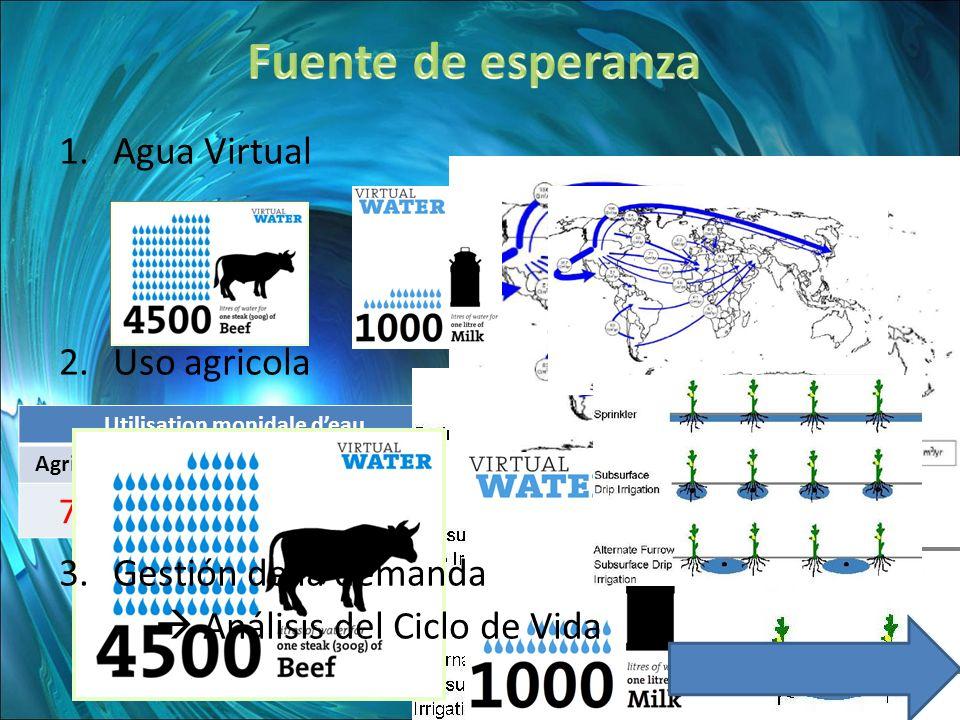 Utilisation monidale deau AgricultureDomestiqueIndustries 70% 10% 20% 1.Agua Virtual 2.Uso agricola 3.Gestión de la demanda Análisis del Ciclo de Vida