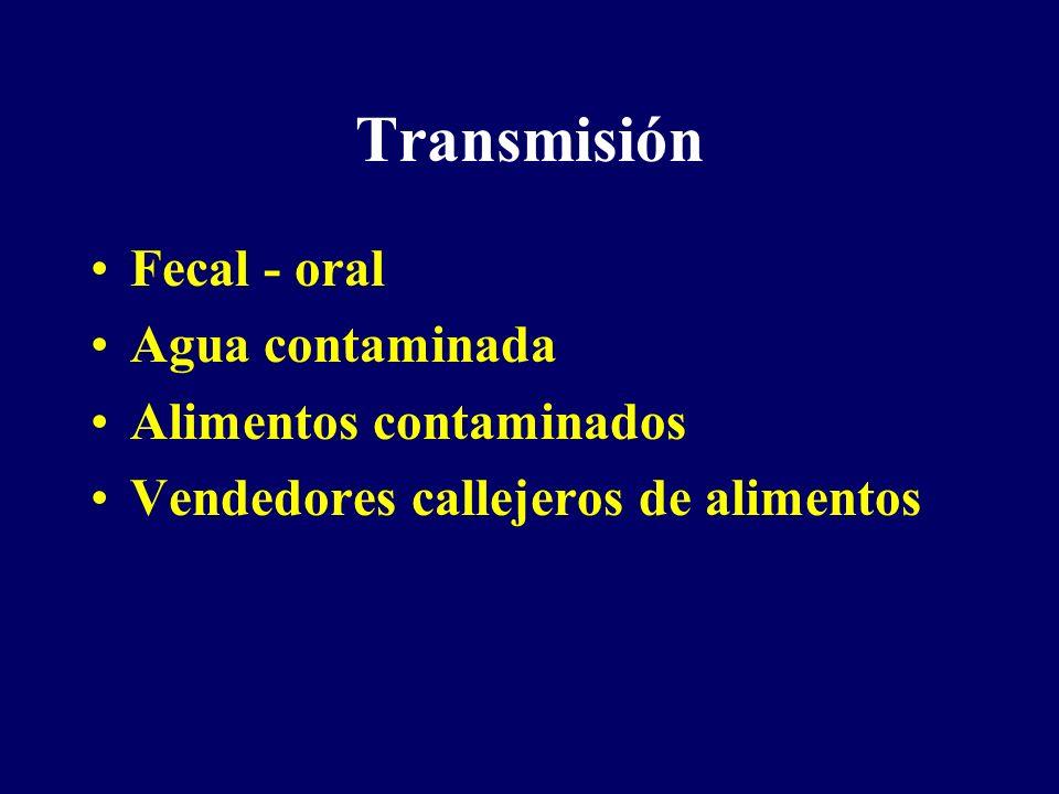 Transmisión Fecal - oral Agua contaminada Alimentos contaminados Vendedores callejeros de alimentos