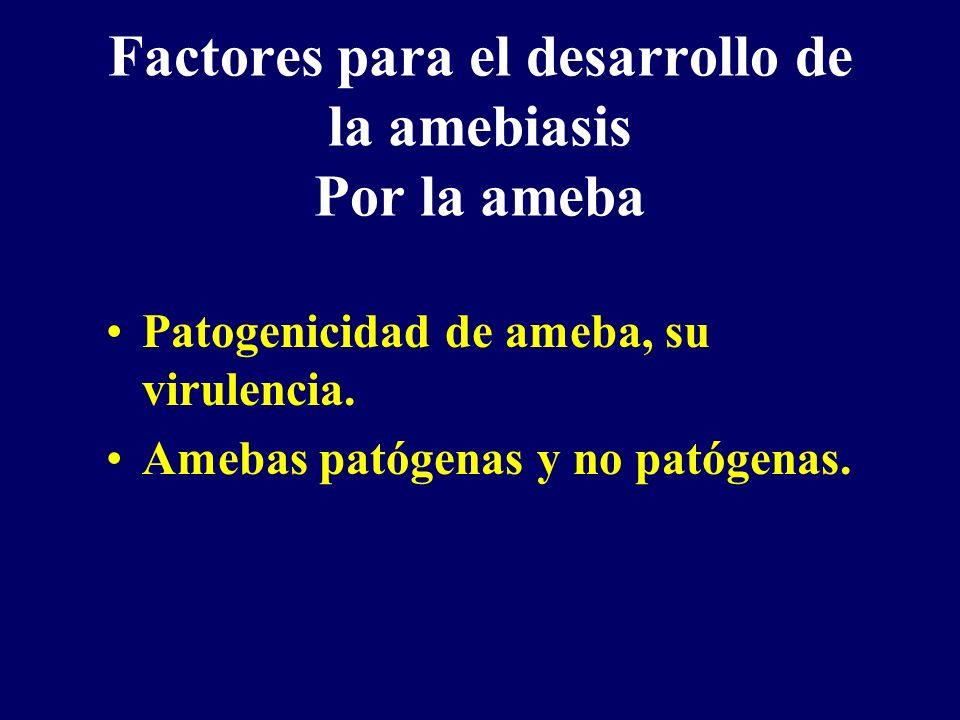 Factores para el desarrollo de la amebiasis Por la ameba Patogenicidad de ameba, su virulencia. Amebas patógenas y no patógenas.