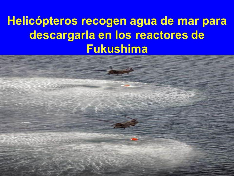 Helicópteros recogen agua de mar para descargarla en los reactores de Fukushima