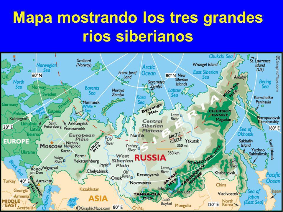 El río Ob, el cuarto más largo del país y el mayor estuario del mundo, es un principal río al oeste de Siberia.