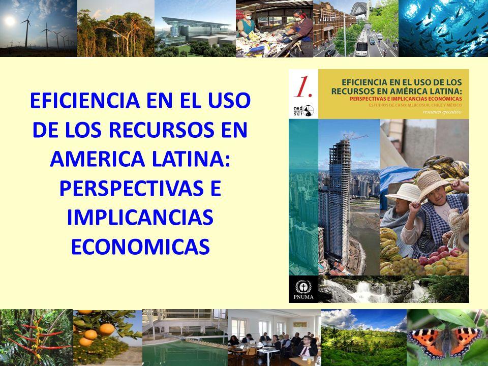 EFICIENCIA EN EL USO DE LOS RECURSOS EN AMERICA LATINA: PERSPECTIVAS E IMPLICANCIAS ECONOMICAS 1