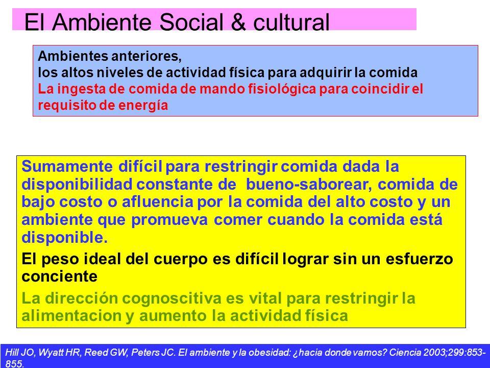 El Ambiente Social & cultural Ambientes anteriores, los altos niveles de actividad física para adquirir la comida La ingesta de comida de mando fisiol