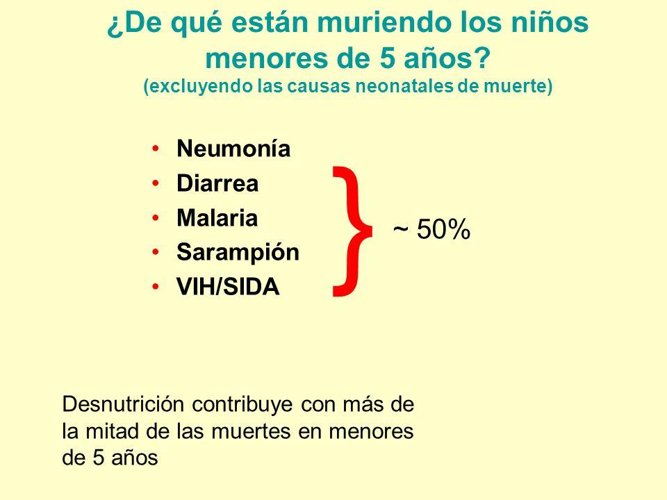 ¿De qué están muriendo los niños menores de 5 años? (excluyendo las causas neonatales de muerte) Neumonía Diarrea Malaria Sarampión VIH/SIDA } ~ 50% D
