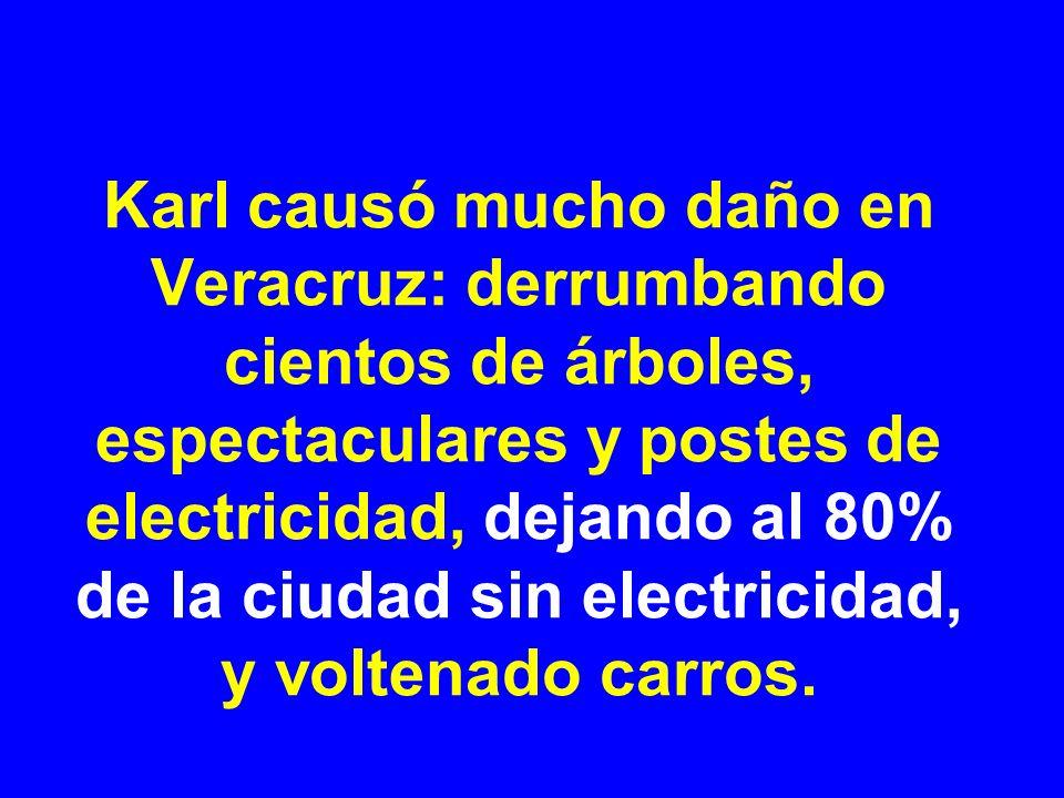 Karl causó mucho daño en Veracruz: derrumbando cientos de árboles, espectaculares y postes de electricidad, dejando al 80% de la ciudad sin electricid