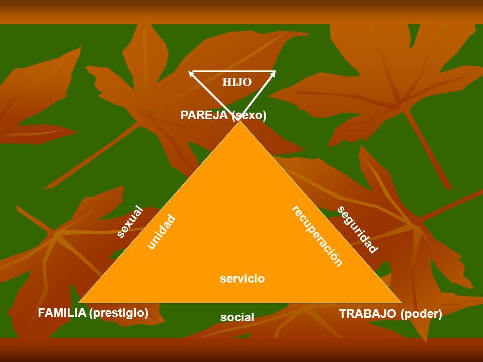 sexual seguridad social unidad recuperación servicio PAREJA (sexo) TRABAJO (poder) FAMILIA (prestigio) HIJO