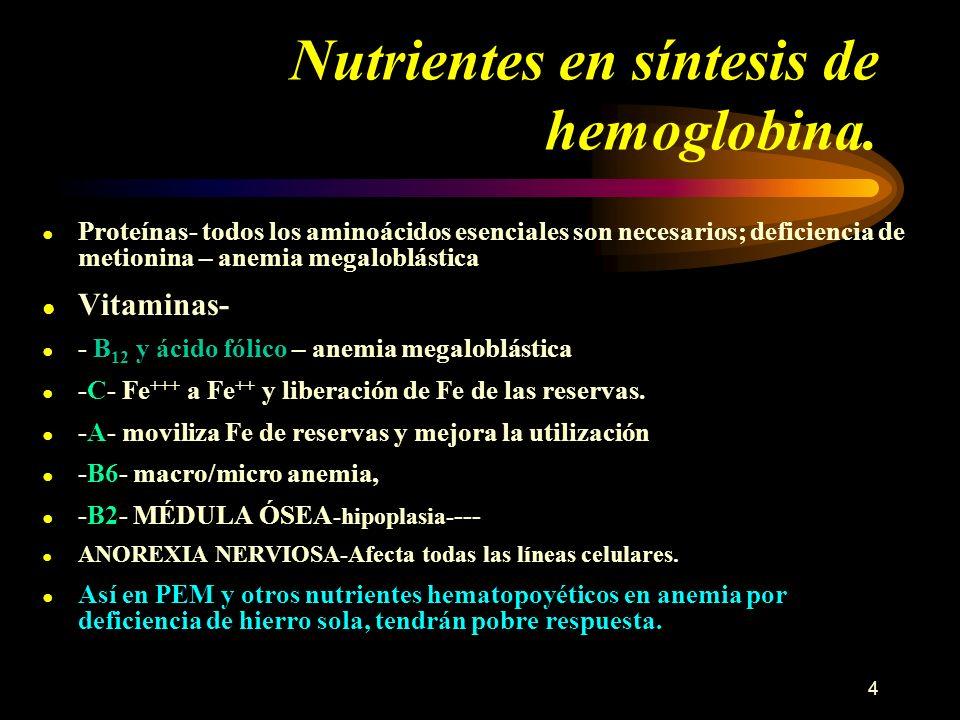 4 Nutrientes en síntesis de hemoglobina. Proteínas- todos los aminoácidos esenciales son necesarios; deficiencia de metionina – anemia megaloblástica