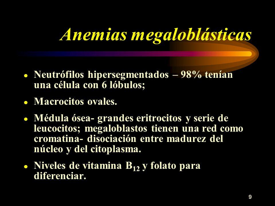 9 Anemias megaloblásticas Neutrófilos hipersegmentados – 98% tenían una célula con 6 lóbulos; Macrocitos ovales. Médula ósea- grandes eritrocitos y se