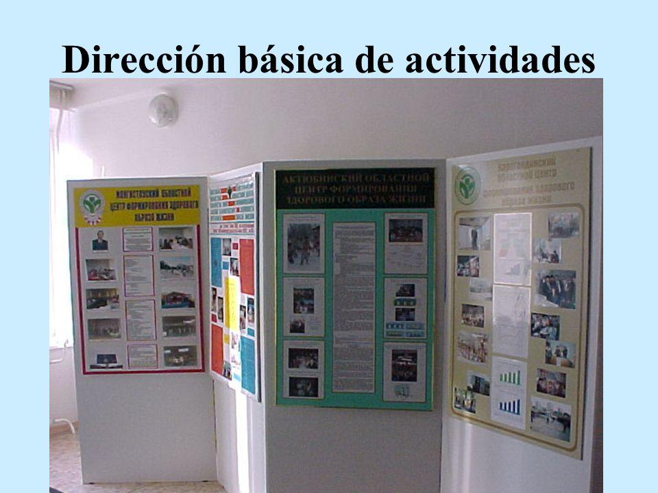 Dirección básica de actividades