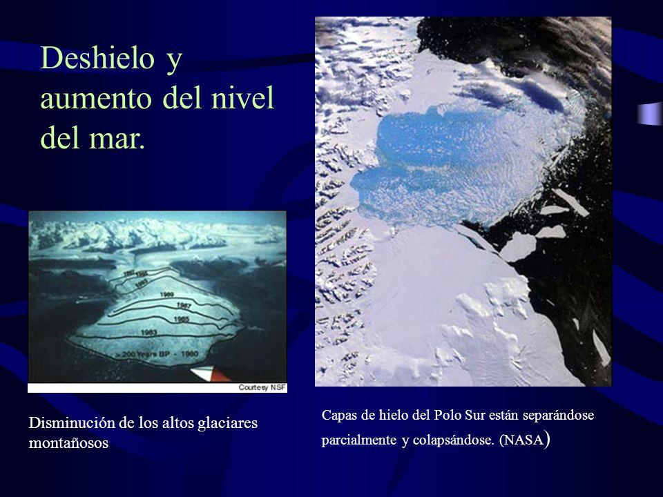 Capas de hielo del Polo Sur están separándose parcialmente y colapsándose. (NASA ) Disminución de los altos glaciares montañosos Deshielo y aumento de