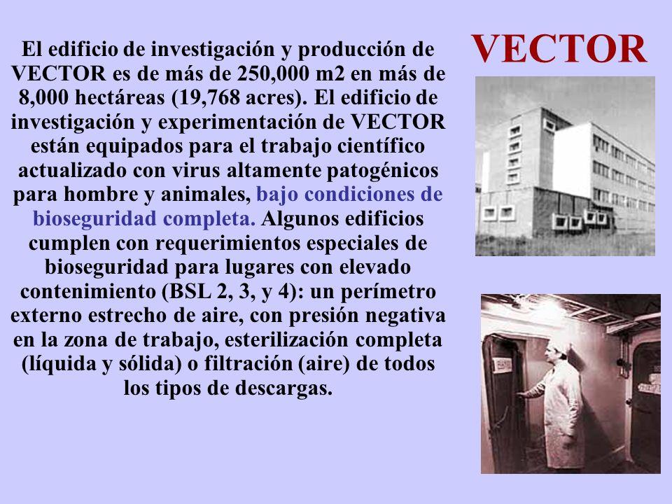VECTOR El edificio de investigación y producción de VECTOR es de más de 250,000 m2 en más de 8,000 hectáreas (19,768 acres). El edificio de investigac