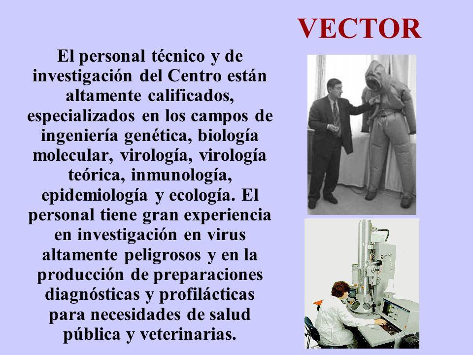 VECTOR El personal técnico y de investigación del Centro están altamente calificados, especializados en los campos de ingeniería genética, biología mo