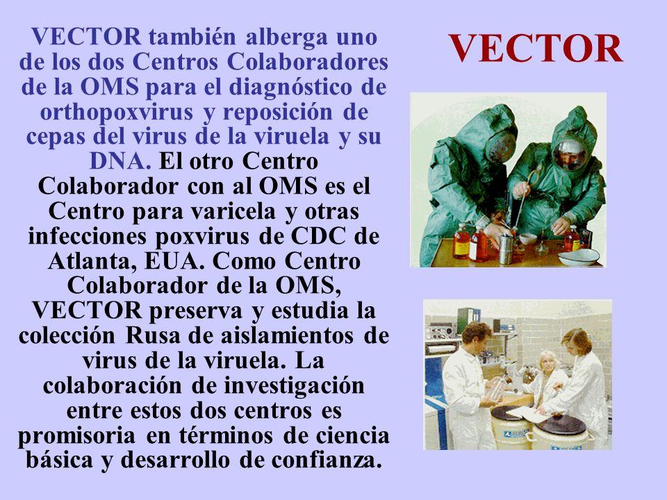 VECTOR VECTOR también alberga uno de los dos Centros Colaboradores de la OMS para el diagnóstico de orthopoxvirus y reposición de cepas del virus de l