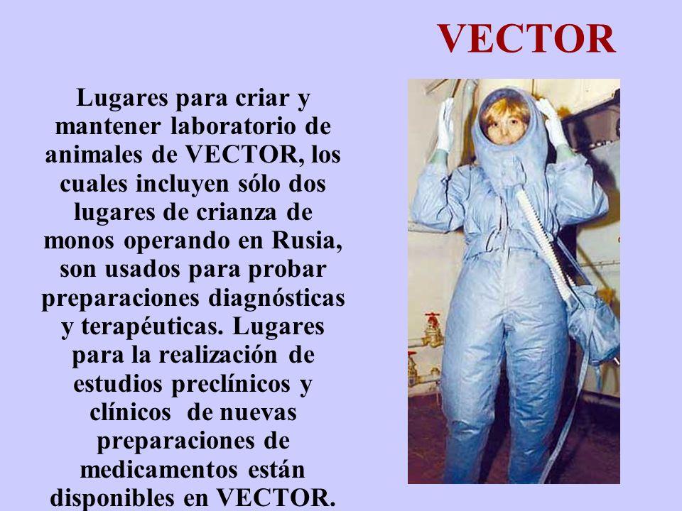 VECTOR Lugares para criar y mantener laboratorio de animales de VECTOR, los cuales incluyen sólo dos lugares de crianza de monos operando en Rusia, so