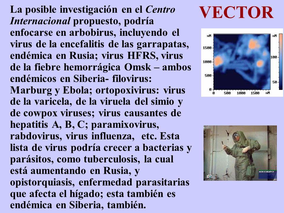 VECTOR La posible investigación en el Centro Internacional propuesto, podría enfocarse en arbobirus, incluyendo el virus de la encefalitis de las garr
