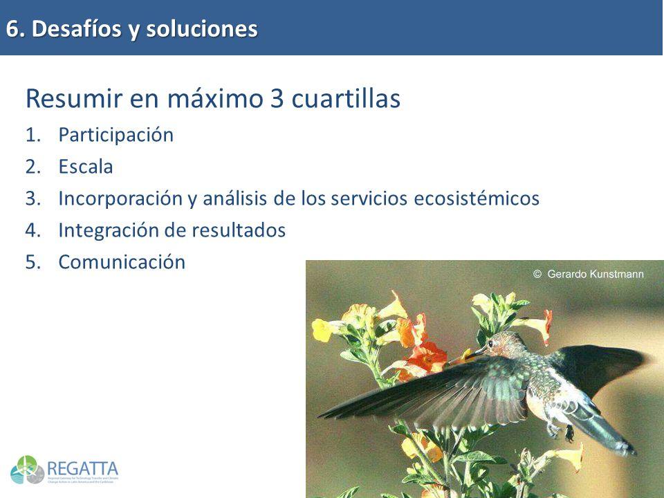 6. Desafíos y soluciones Resumir en máximo 3 cuartillas 1.Participación 2.Escala 3.Incorporación y análisis de los servicios ecosistémicos 4.Integraci