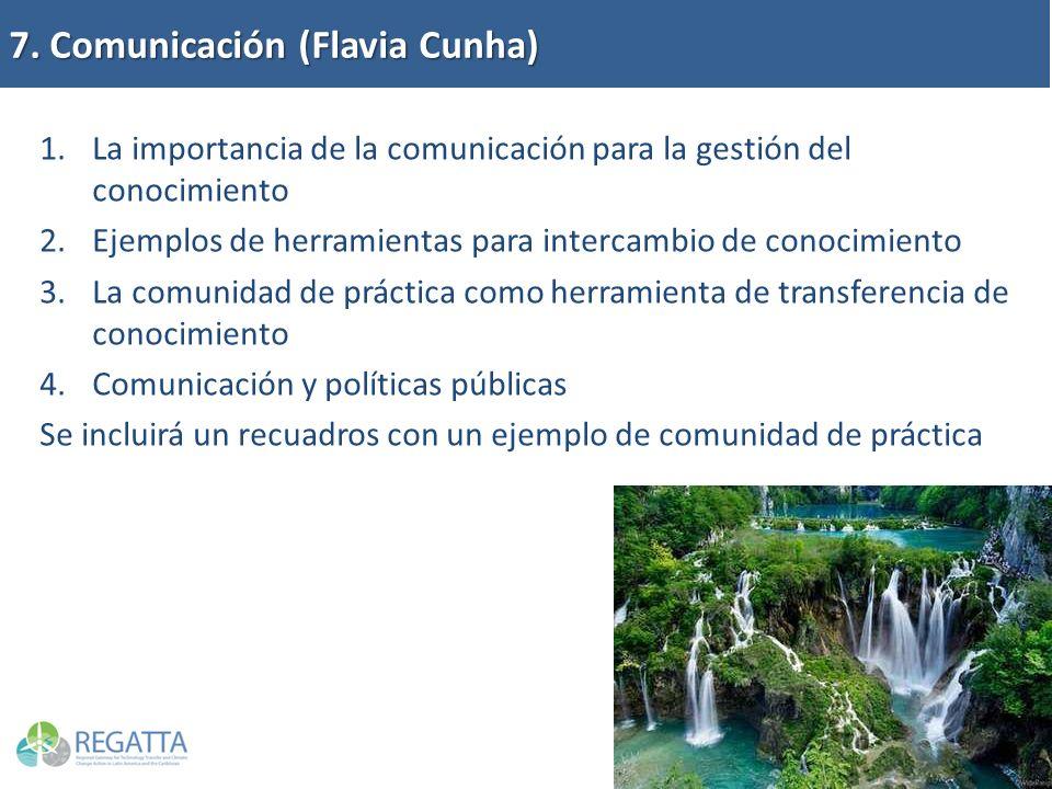 7. Comunicación (Flavia Cunha) 1.La importancia de la comunicación para la gestión del conocimiento 2.Ejemplos de herramientas para intercambio de con