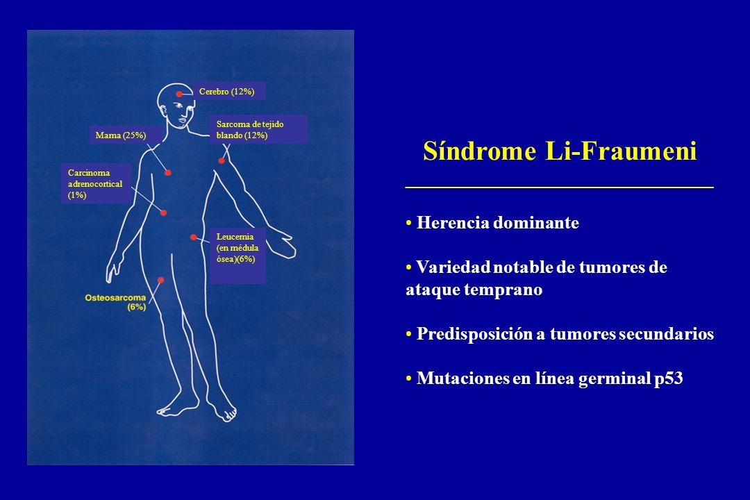 Síndrome Li-Fraumeni _________________________________ Herencia dominante Variedad notable de tumores de ataque temprano Predisposición a tumores secu
