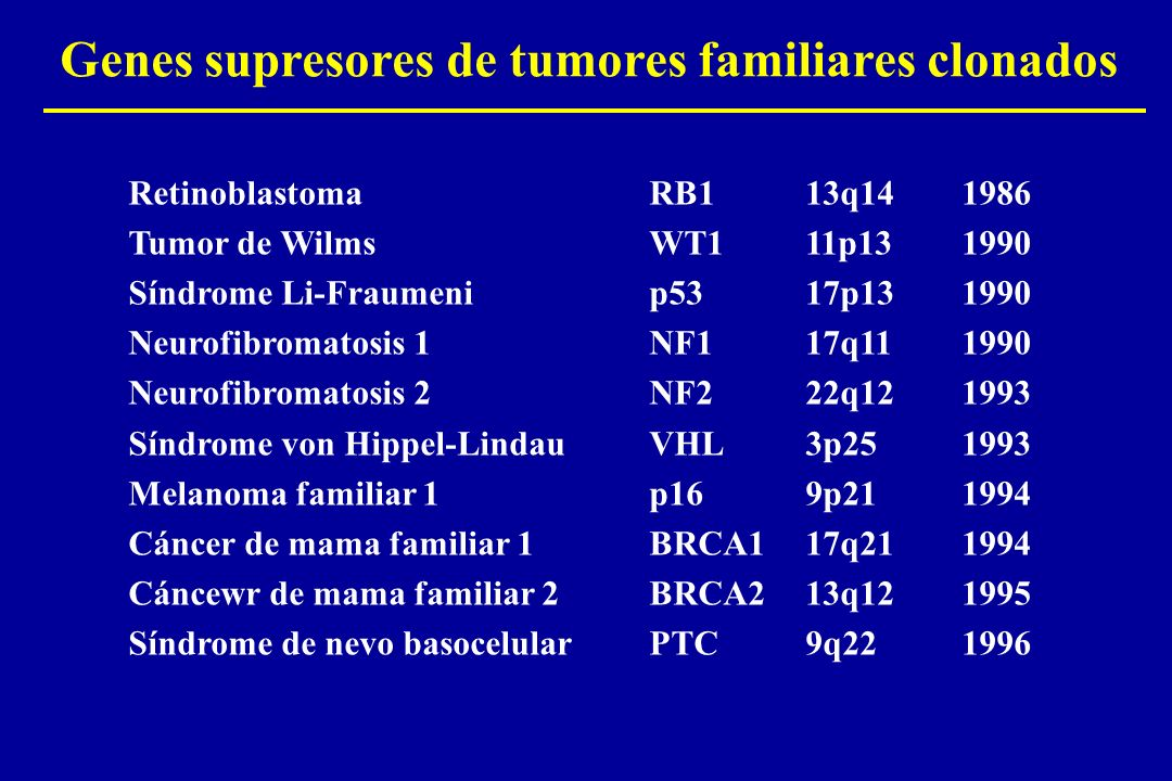 Genes supresores de tumores familiares clonados RetinoblastomaRB113q141986 Tumor de WilmsWT111p131990 Síndrome Li-Fraumenip5317p131990 Neurofibromatos