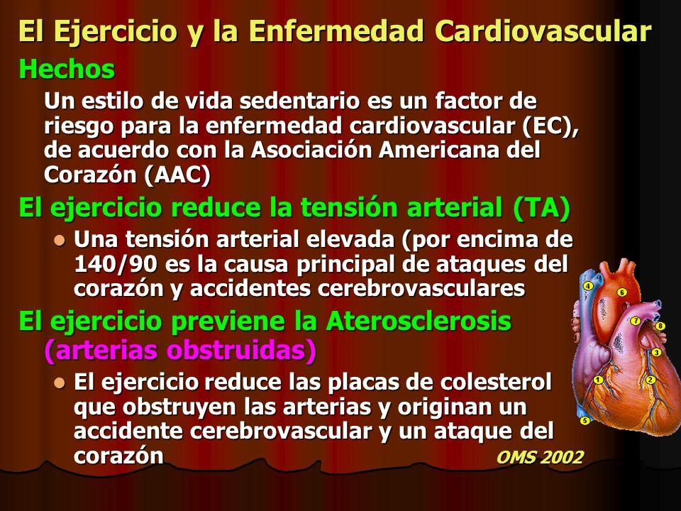 El Ejercicio y la Enfermedad Cardiovascular Hechos Un estilo de vida sedentario es un factor de riesgo para la enfermedad cardiovascular (EC), de acue