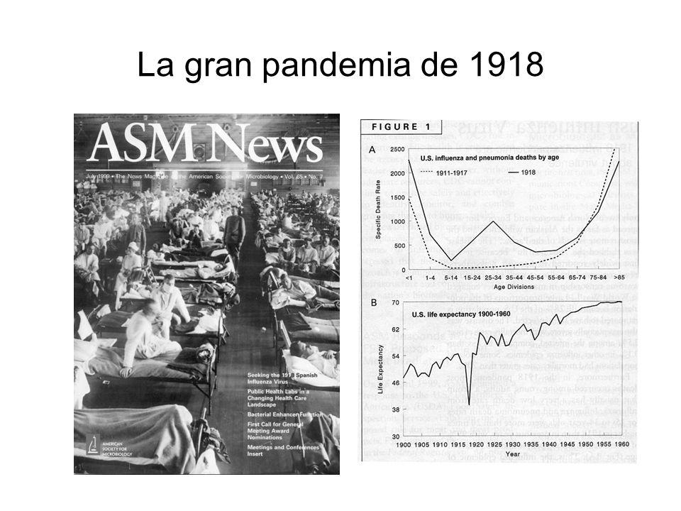 Imágenes de la epidemia de influenza en 1918 Museo Nacional de Salud y Medicina