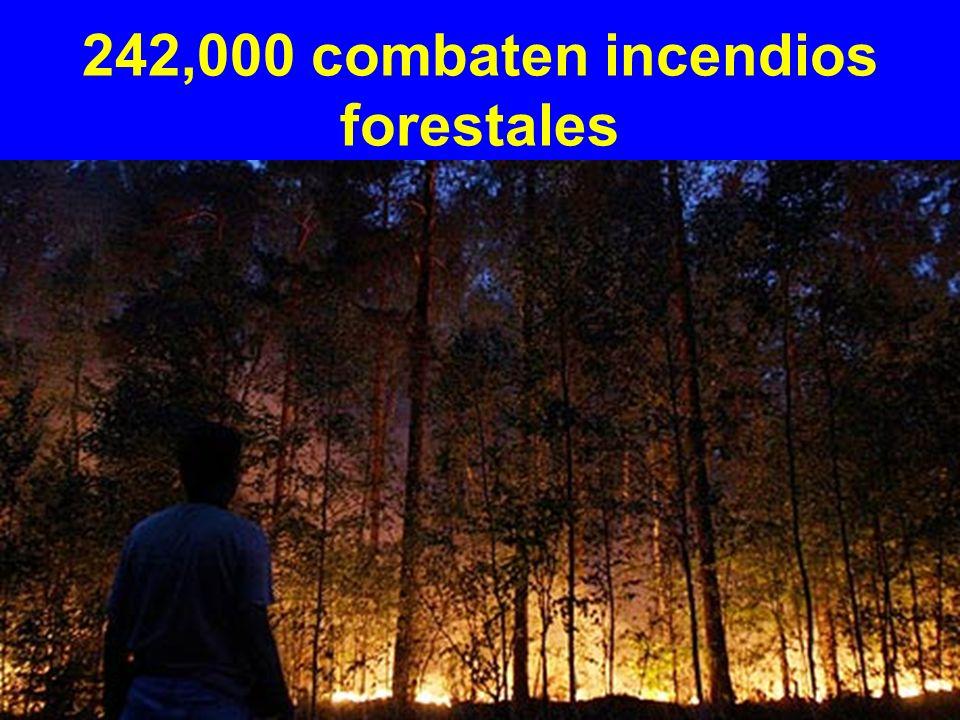 242,000 combaten incendios forestales