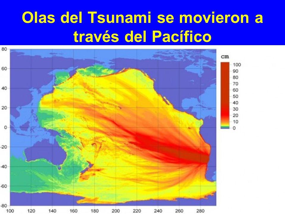 Olas del Tsunami se movieron a través del Pacífico