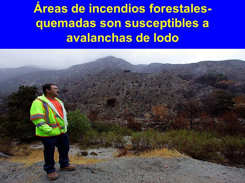Áreas de incendios forestales- quemadas son susceptibles a avalanchas de lodo