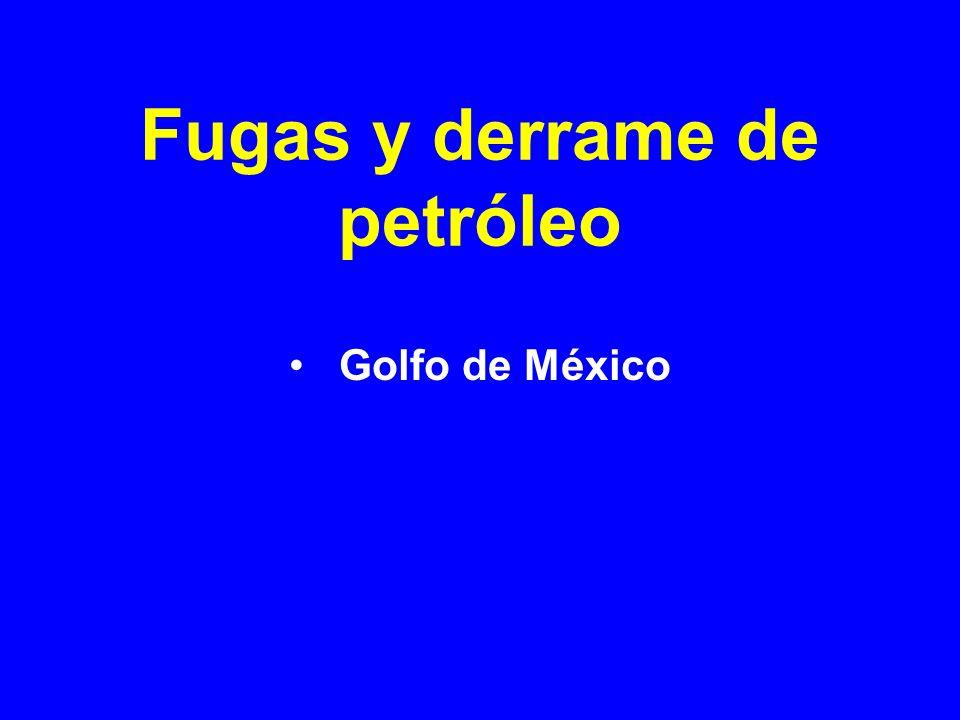 Fugas y derrame de petróleo Golfo de México