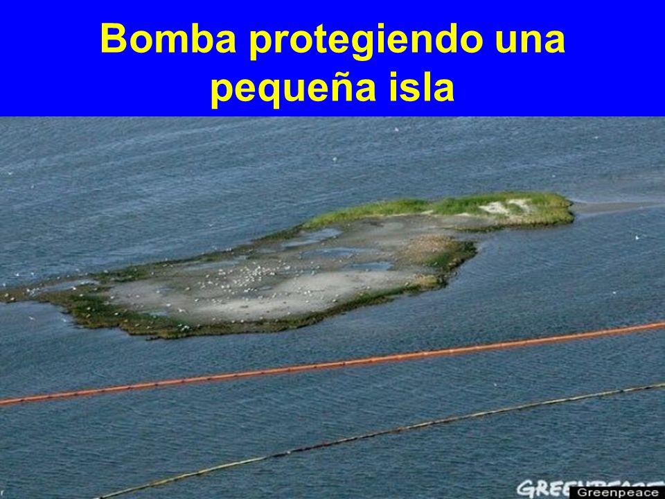 Bomba protegiendo una pequeña isla