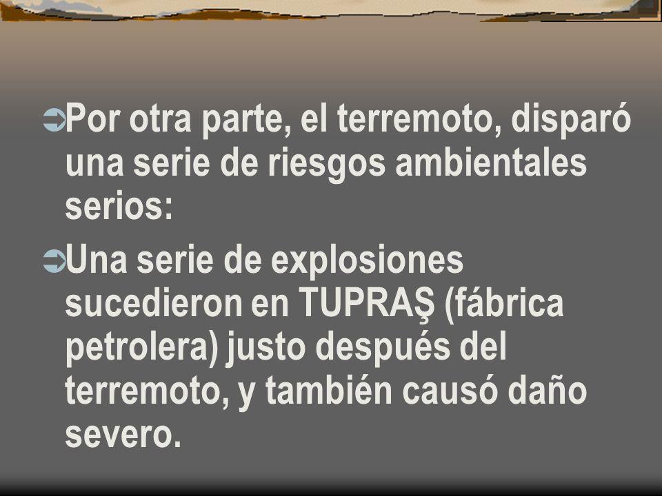 Por otra parte, el terremoto, disparó una serie de riesgos ambientales serios: Una serie de explosiones sucedieron en TUPRAŞ (fábrica petrolera) justo después del terremoto, y también causó daño severo.