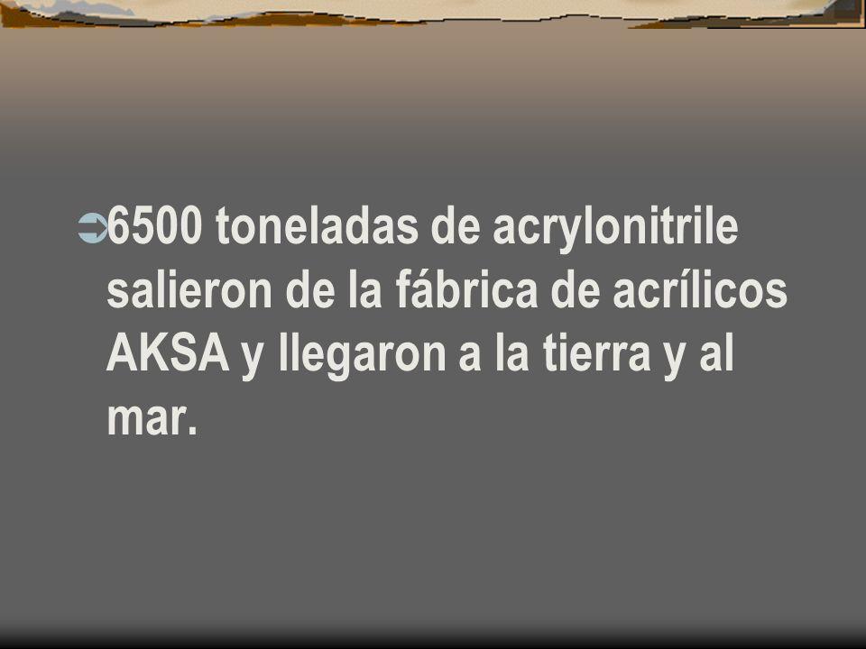 6500 toneladas de acrylonitrile salieron de la fábrica de acrílicos AKSA y llegaron a la tierra y al mar.