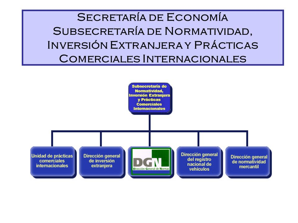 SECRETARÍA DE ECONOMÍA Subsecretaría de Normatividad, Inversión Extranjera y Prácticas Comerciales Internacionales Dirección General de Normas Organiz