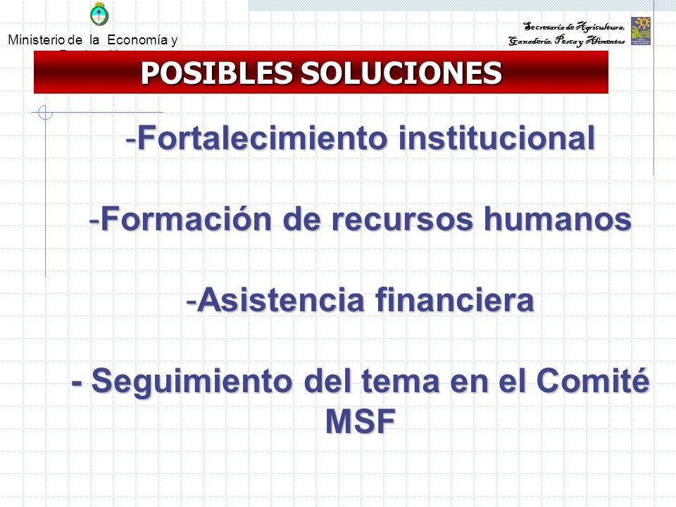 Ministerio de la Economía y Producción Secretaría de Agricultura, Ganadería, Pesca y Alimentos POSIBLES SOLUCIONES -Fortalecimiento institucional -Formación de recursos humanos -Asistencia financiera - Seguimiento del tema en el Comité MSF