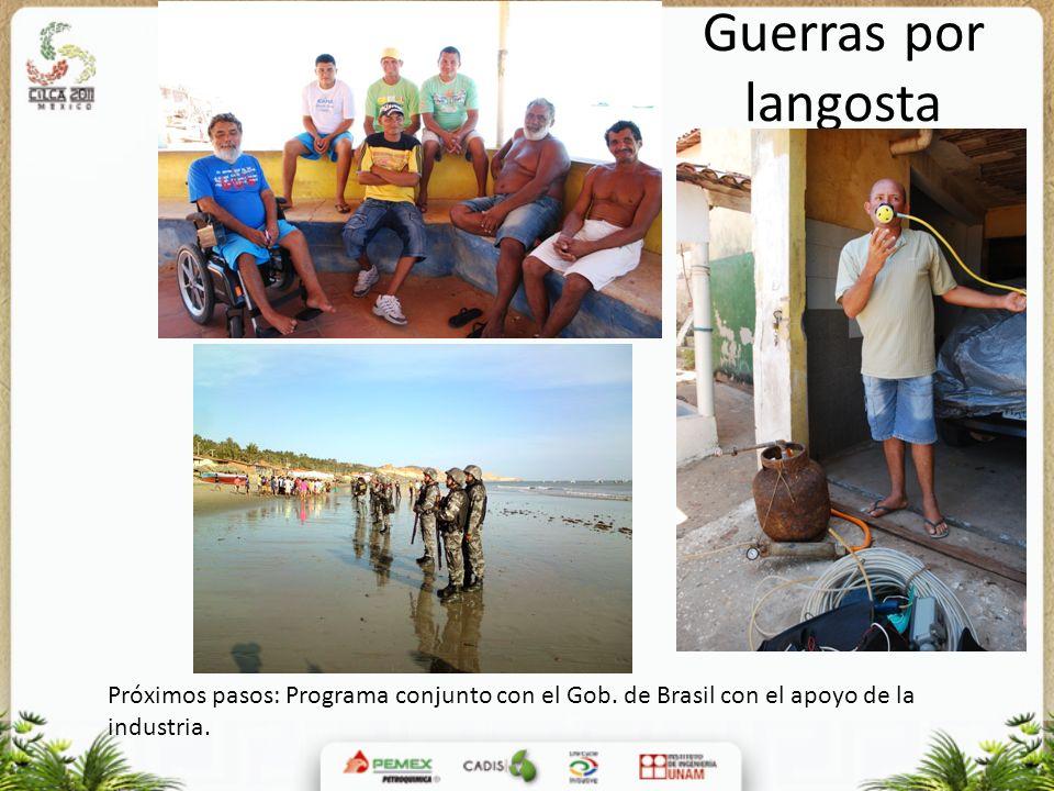 Guerras por langosta Próximos pasos: Programa conjunto con el Gob. de Brasil con el apoyo de la industria.