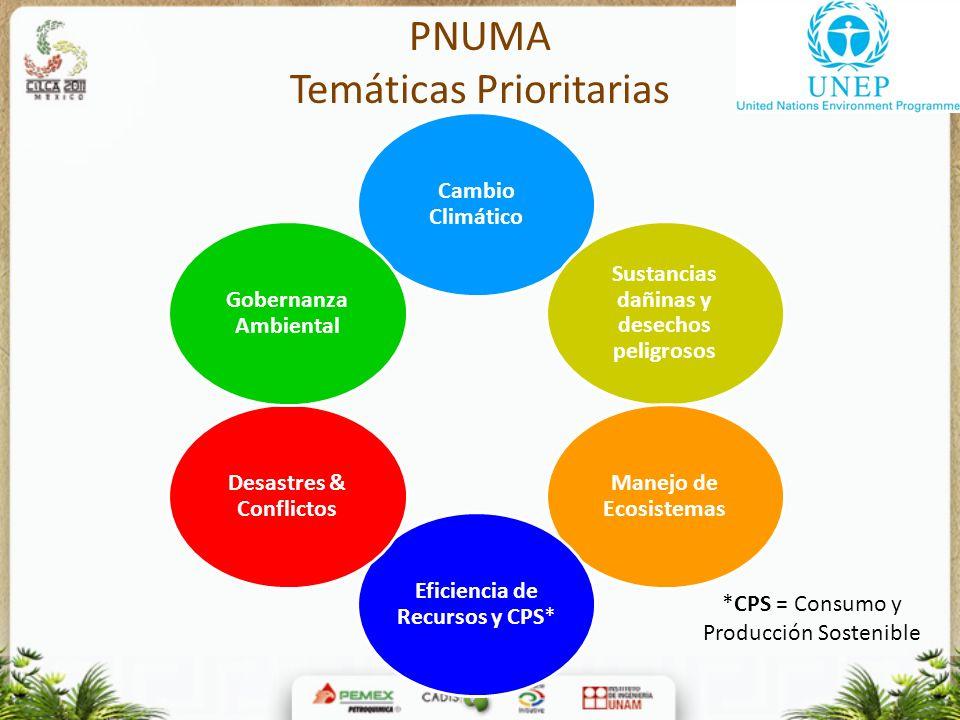PNUMA Temáticas Prioritarias Cambio Climático Sustancias dañinas y desechos peligrosos Manejo de Ecosistemas Eficiencia de Recursos y CPS* Desastres &