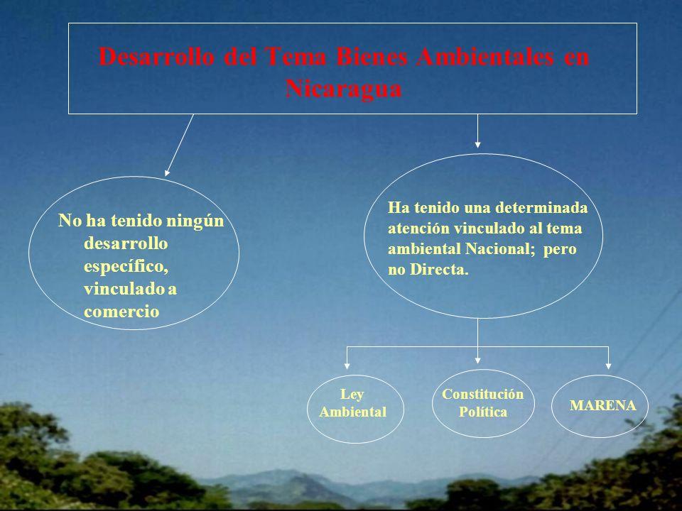 Desarrollo del Tema Bienes Ambientales en Nicaragua No ha tenido ningún desarrollo específico, vinculado a comercio Ha tenido una determinada atención vinculado al tema ambiental Nacional; pero no Directa.