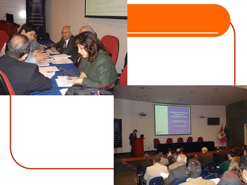 Etapas de desarrollo del trabajo Ago y Set 2005 Inicio Primera visita al Perú, presentándose resultados preliminares.