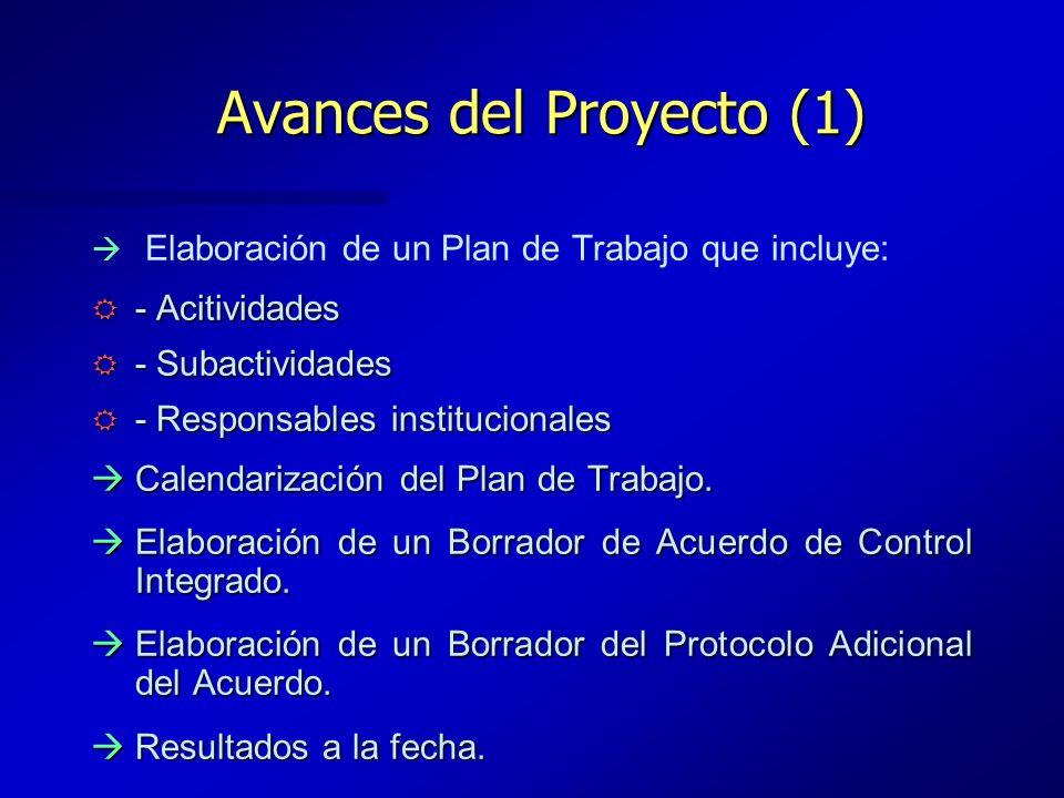 Avances del Proyecto (1) Elaboración de un Plan de Trabajo que incluye: R - Acitividades R - Subactividades R - Responsables institucionales àCalendar