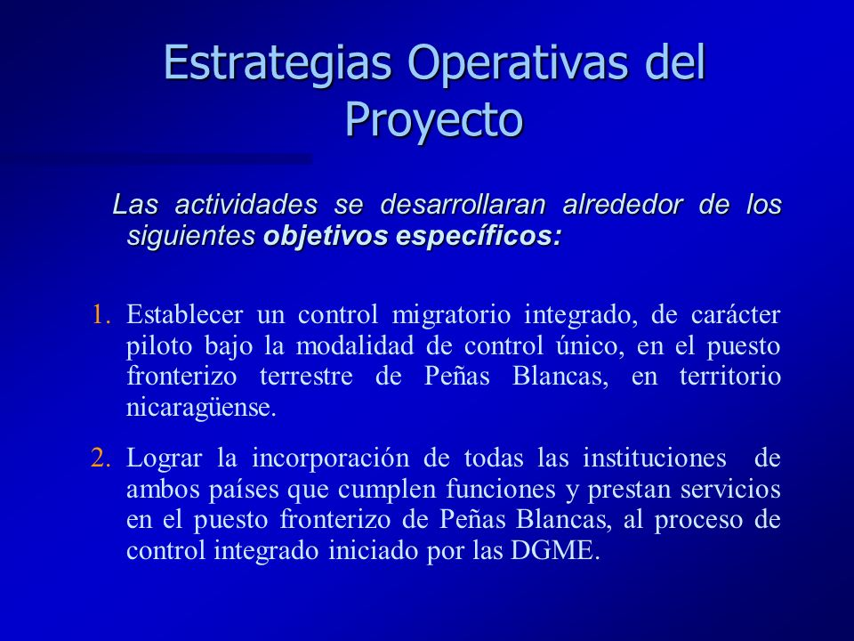 Estrategias Operativas del Proyecto Las actividades se desarrollaran alrededor de los siguientes objetivos específicos: Las actividades se desarrollar