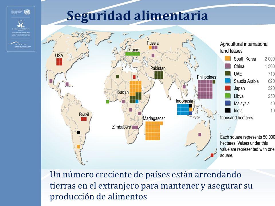 Seguridad alimentaria Un número creciente de países están arrendando tierras en el extranjero para mantener y asegurar su producción de alimentos