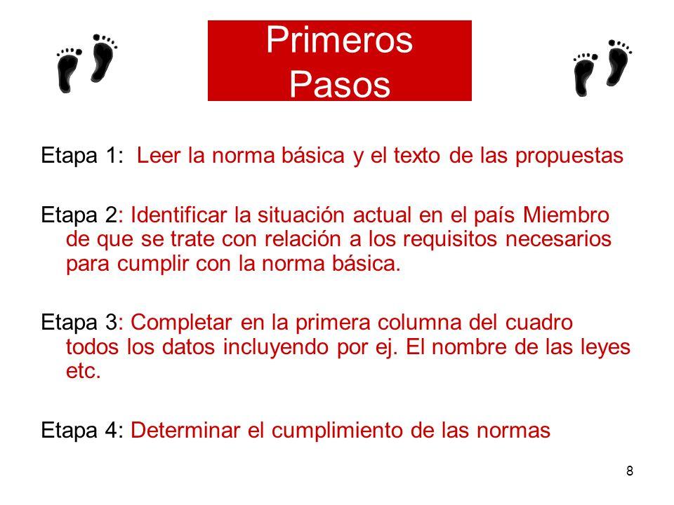8 Primeros Pasos Etapa 1: Leer la norma básica y el texto de las propuestas Etapa 2: Identificar la situación actual en el país Miembro de que se trat