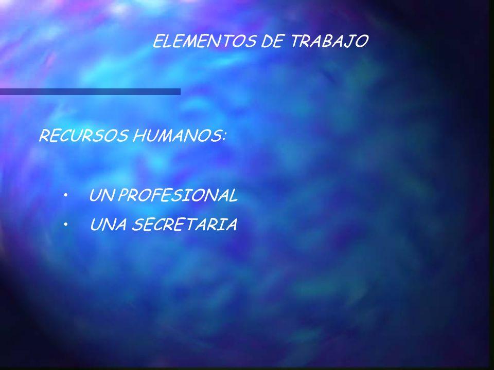 ELEMENTOS DE TRABAJO RECURSOS HUMANOS: UN PROFESIONAL UNA SECRETARIA