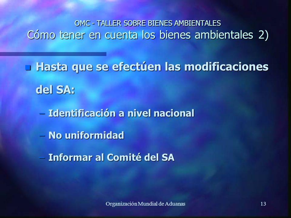 Organización Mundial de Aduanas13 OMC - TALLER SOBRE BIENES AMBIENTALES Cómo tener en cuenta los bienes ambientales 2) n Hasta que se efectúen las mod