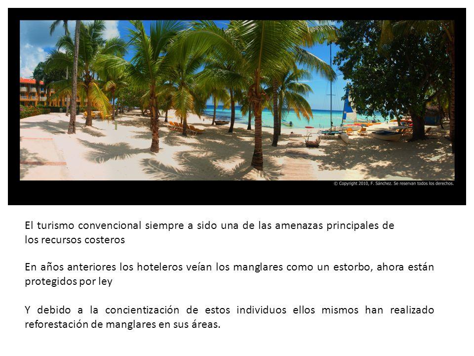 En años anteriores los hoteleros veían los manglares como un estorbo, ahora están protegidos por ley Y debido a la concientización de estos individuos