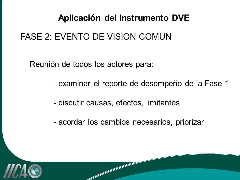 Reunión de todos los actores para: - examinar el reporte de desempeño de la Fase 1 - discutir causas, efectos, limitantes - acordar los cambios necesarios, priorizar FASE 2: EVENTO DE VISION COMUN Aplicación del Instrumento DVE