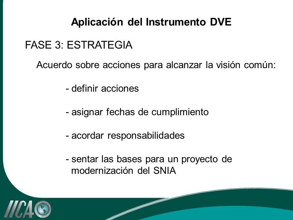 Acuerdo sobre acciones para alcanzar la visión común: - definir acciones - asignar fechas de cumplimiento - acordar responsabilidades - sentar las bases para un proyecto de modernización del SNIA FASE 3: ESTRATEGIA Aplicación del Instrumento DVE