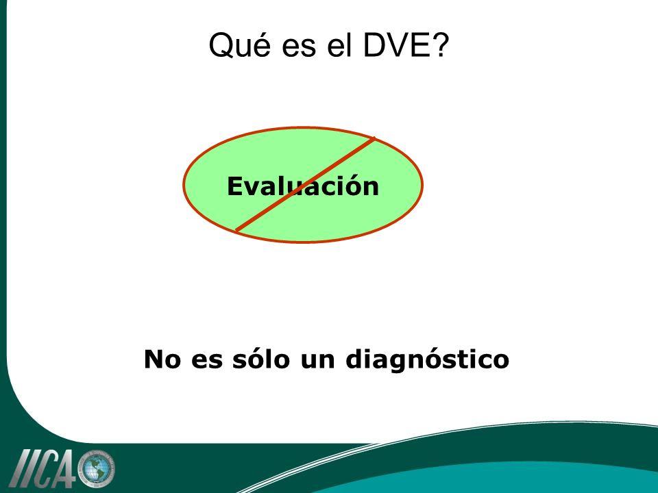 Qué es el DVE? Evaluación No es sólo un diagnóstico