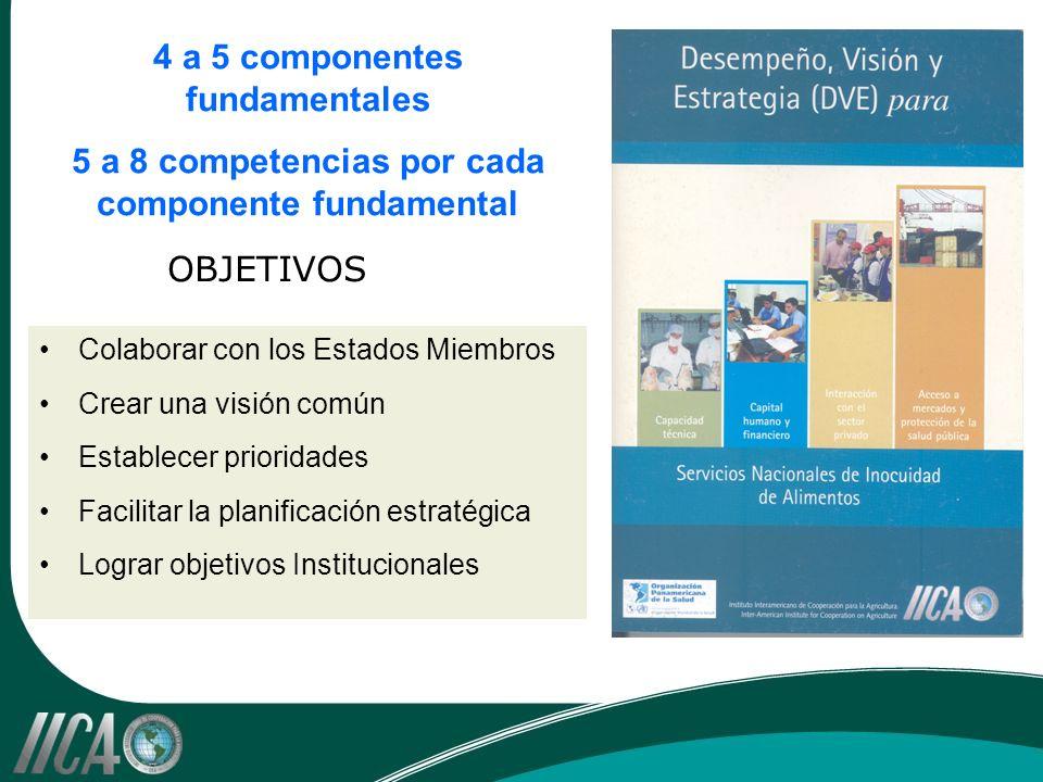 4 a 5 componentes fundamentales 5 a 8 competencias por cada componente fundamental Colaborar con los Estados Miembros Crear una visión común Establecer prioridades Facilitar la planificación estratégica Lograr objetivos Institucionales OBJETIVOS