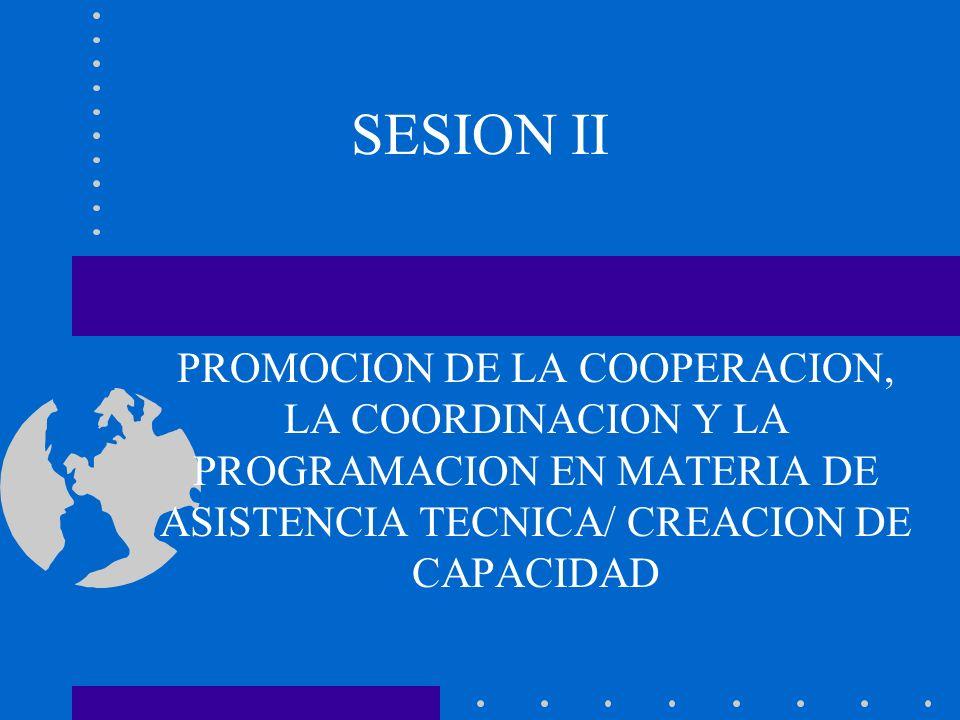 SESION II PROMOCION DE LA COOPERACION, LA COORDINACION Y LA PROGRAMACION EN MATERIA DE ASISTENCIA TECNICA/ CREACION DE CAPACIDAD